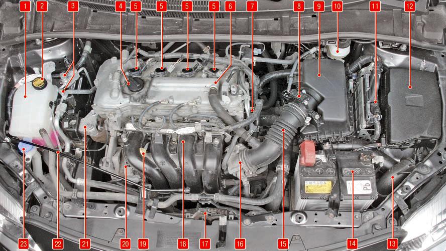 Общие сведения об автомобиле Тойота Королла 10 Аурис